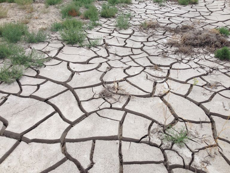 2014-07-28_12_12_16_Drying_and_cracking_mud_at_the_intersection_of_Nevada_State_Route_361_-Gabbs_Valley_Road-_and_Nevada_State_Route_844_-Ione_Road-_near_Gabbs-_Nevada.JPG