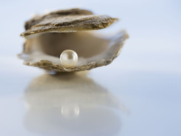 Close up of pearl in oyster shell