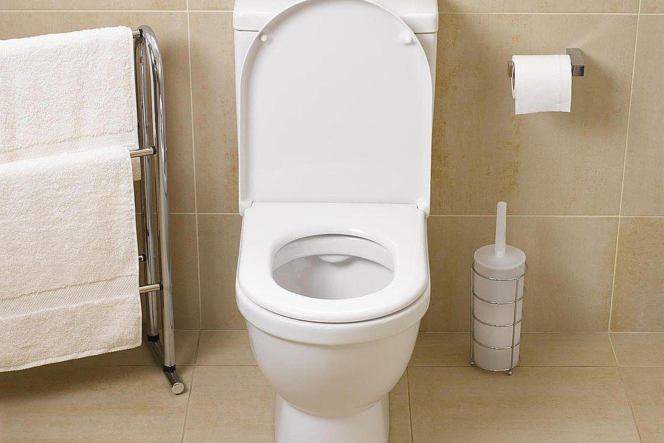 Toilet, restroom