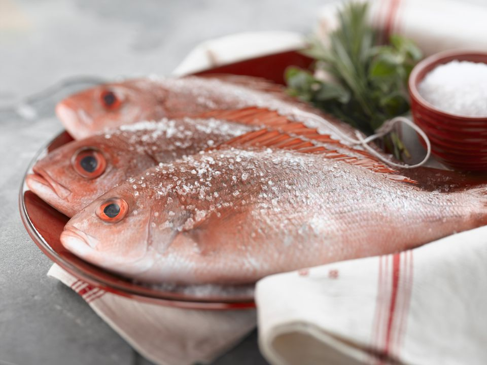Red Snapper, a kosher species of fish