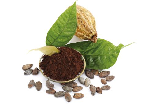 cocoa beans, powder and leaves