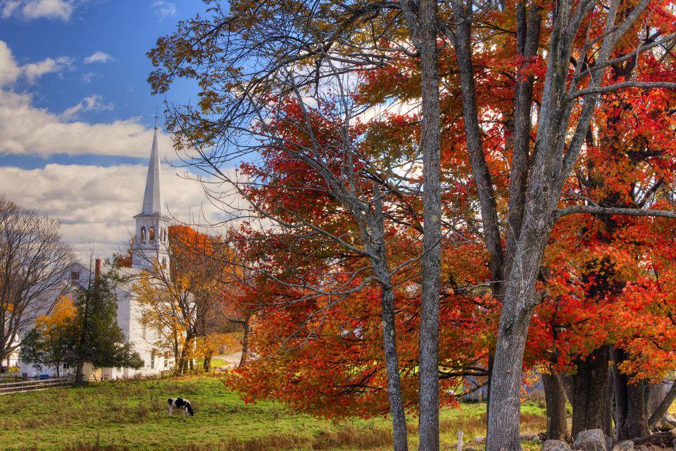Peacham VT - Northeast Kingdom Fall Foliage Festival
