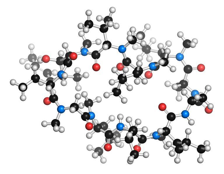 Cyclosporine Molecule
