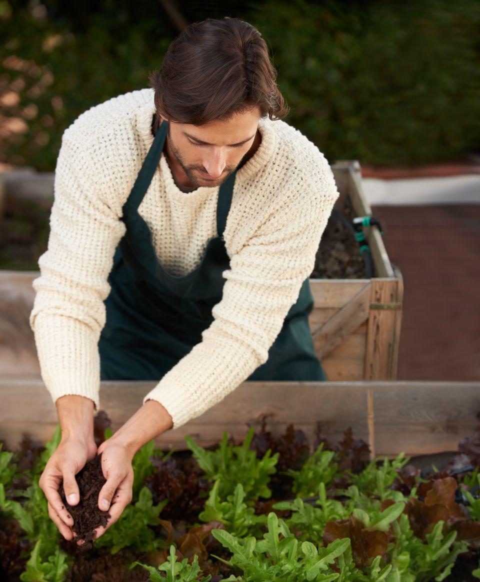 Man tending organic garden