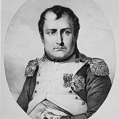short biography napoleon bonaparte Napoleon bonaparte biography cutting up hairs into short segments and analysing each segment individually provides a histogram of arsenic concentration in the body.