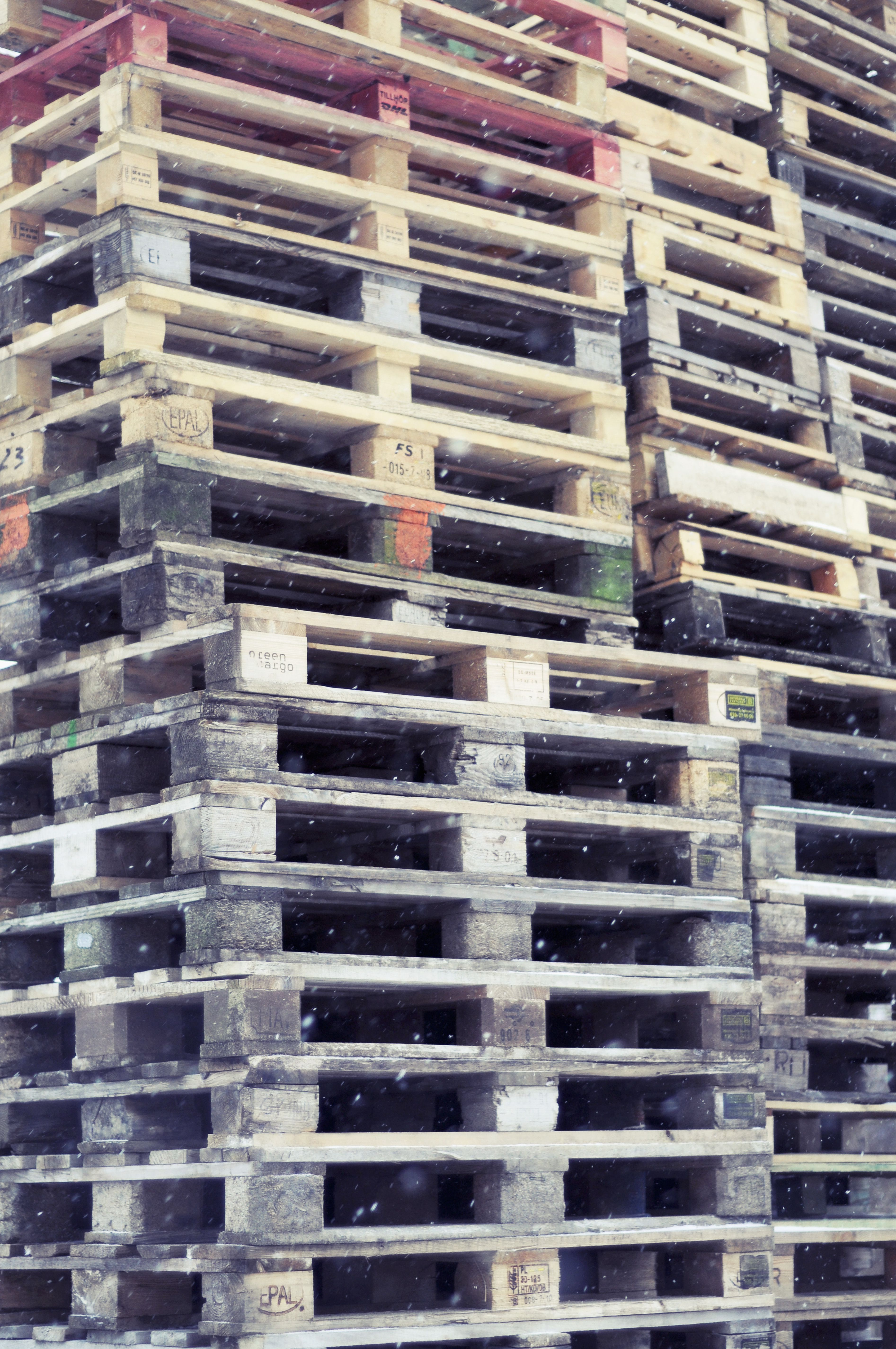 Mold Free Pallets Start with Moisture Control. Pallet Dismantling or Disassembly Equipment