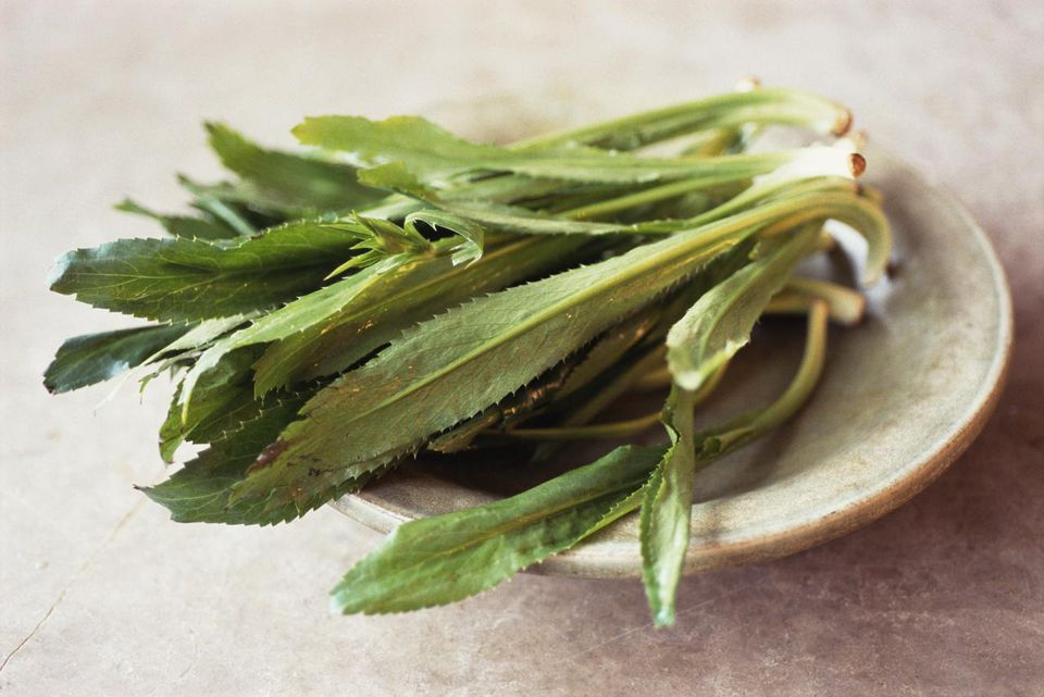 Culantro, the main ingredient in Recaito