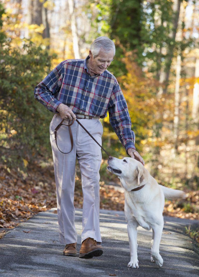 senior man walking dog