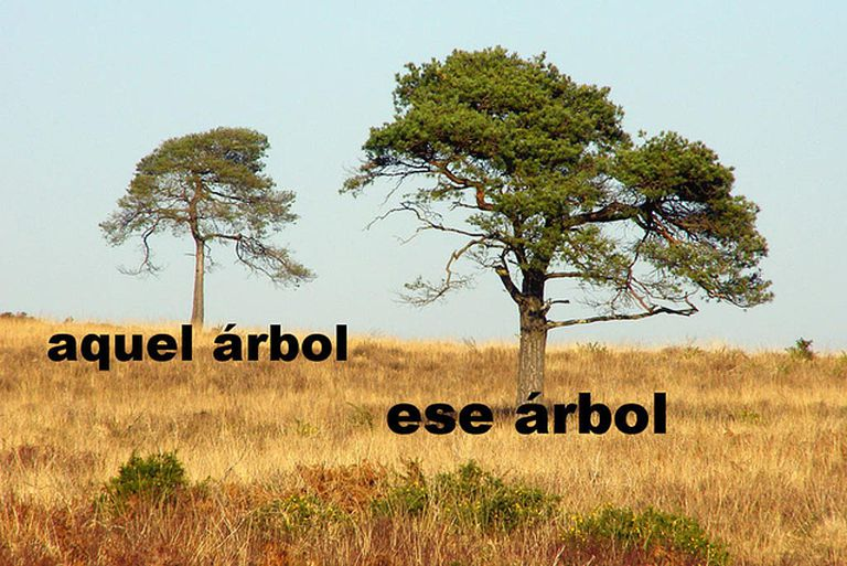 "Two trees to illustrate lesson on ""aquel"" and ""ese"""