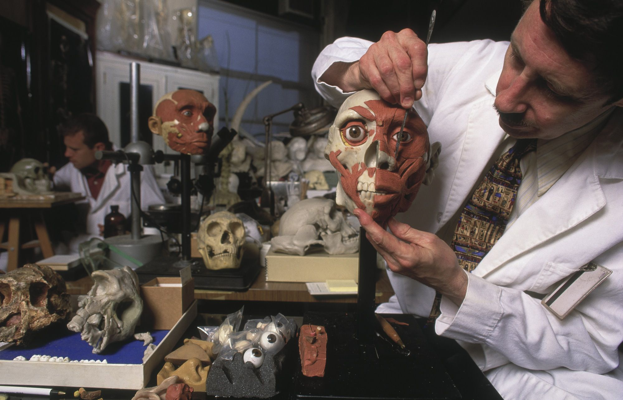 forensic anthropologist a career choice Undergraduates who choose to major in anthropology can be sure that their choice is both exciting and practical  forensic anthropologists, in careers glamorized .