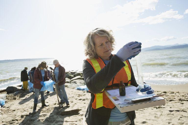 Environmental scientist testing water on sunny beach