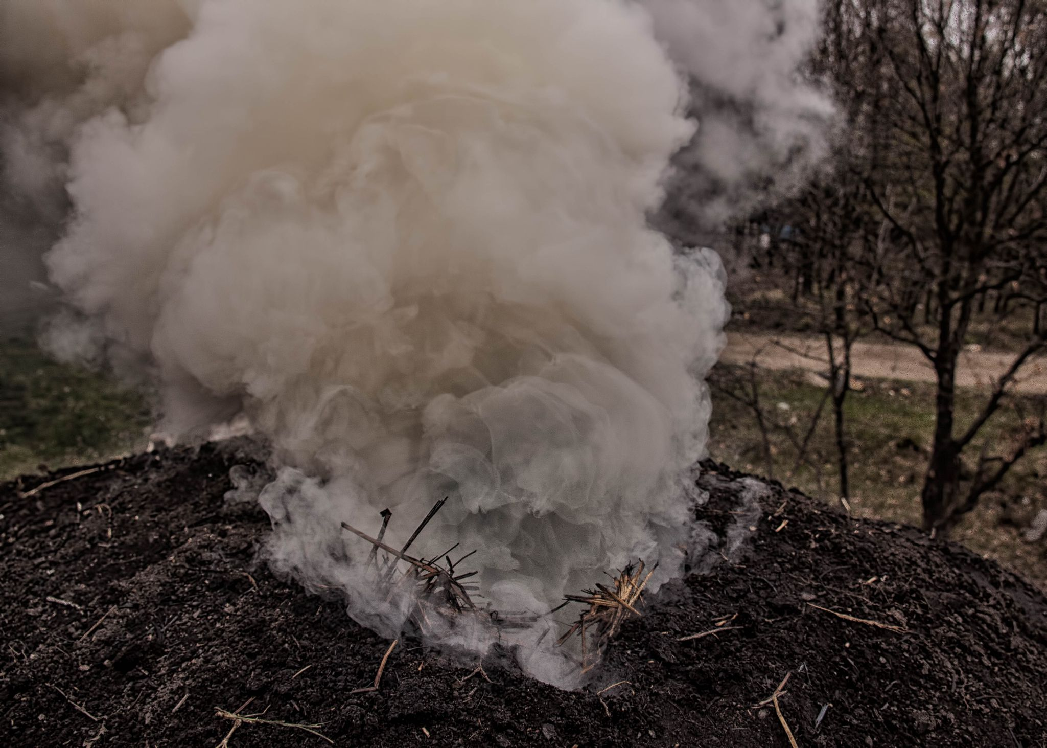 The Chemical Composition of Wood Smoke