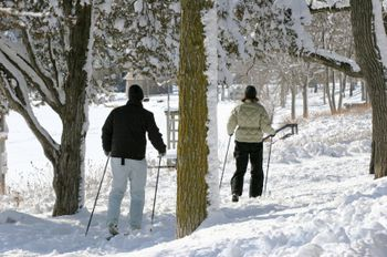 10 Places To Snowshoe And Cross Country Ski In Vermont