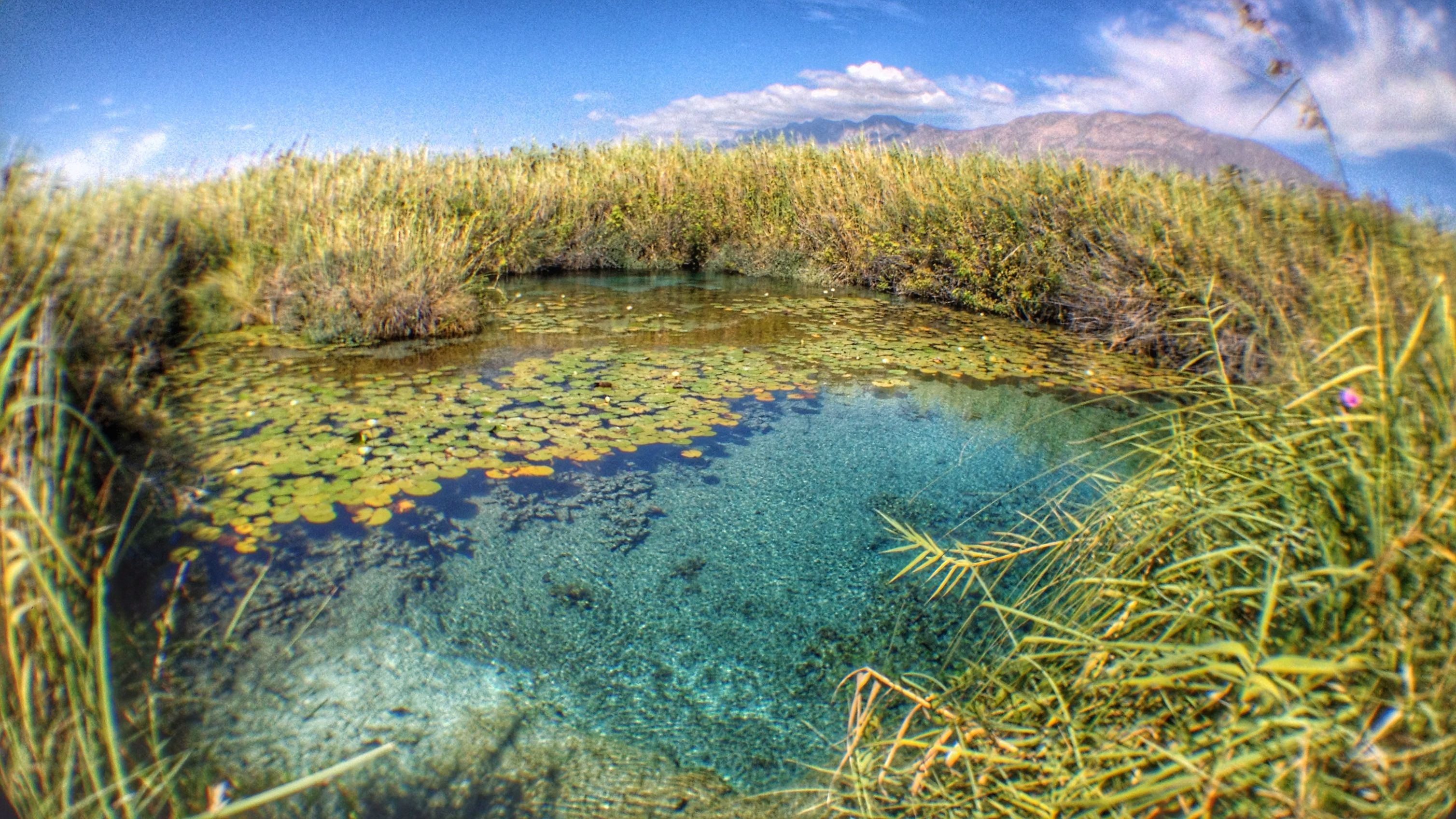 top 10 natural wonders of mexico