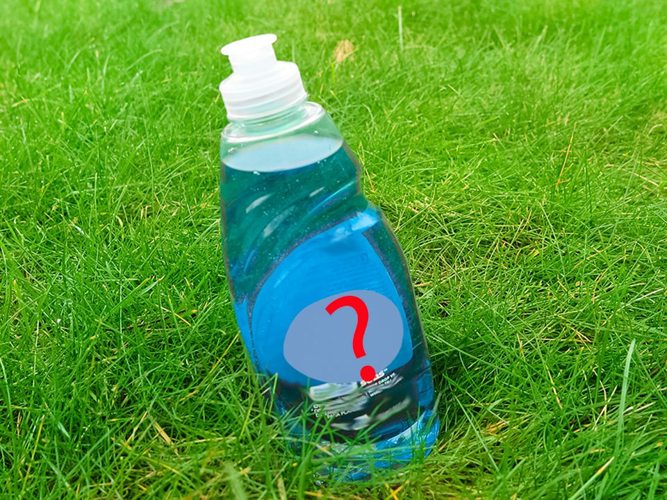 Dish soap bottle on a lawn with a question mark
