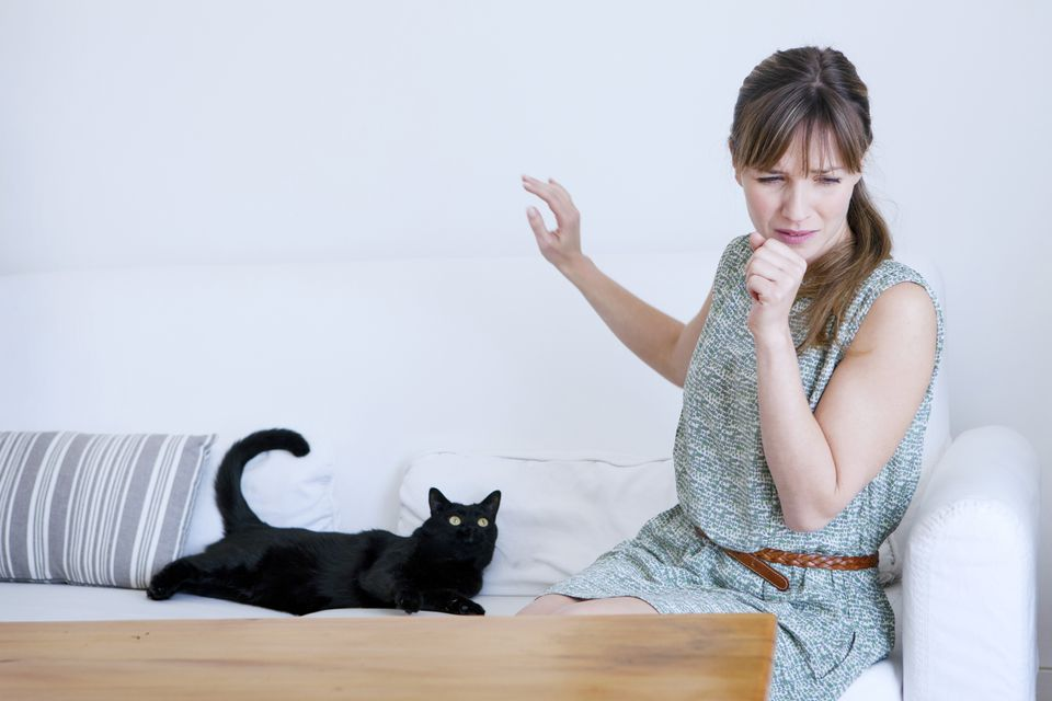 Allergic woman to cats