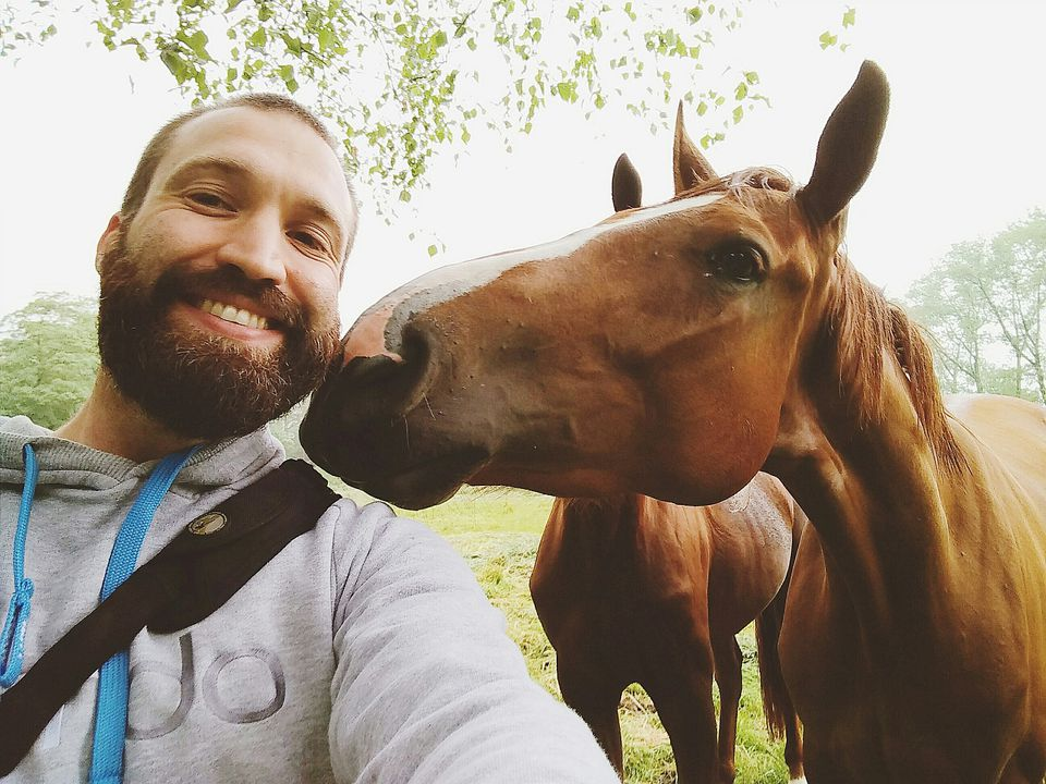 horse giving bearded man kiss