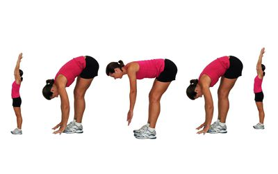 chest leg and full body stretching exercises