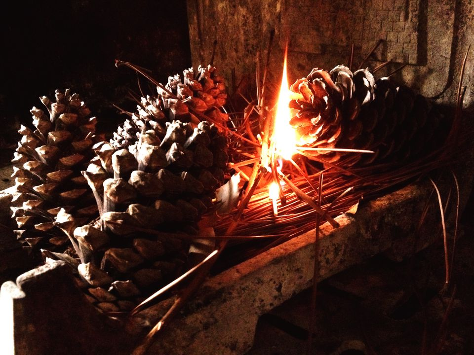 Make Pine Cone Fire Starters With Laundry Supplies
