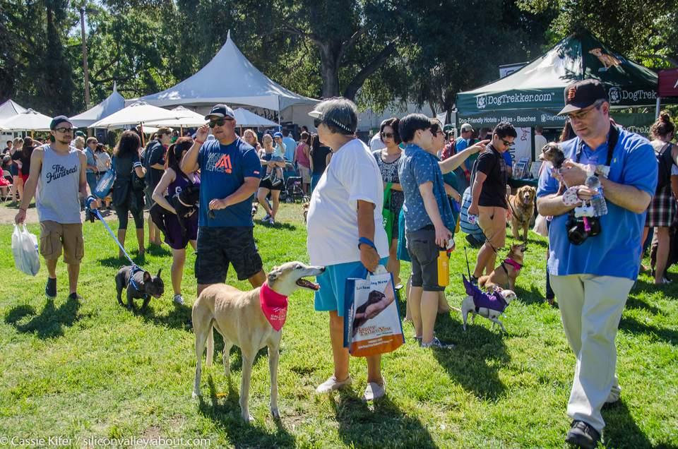 Bark In The Park San Jose, 2015