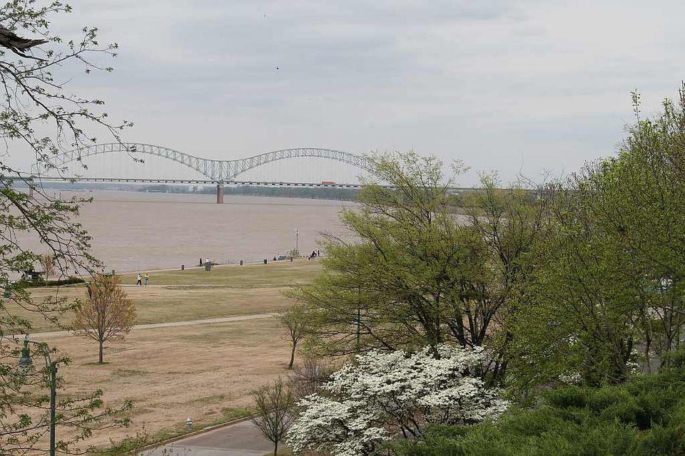 Memphis spring