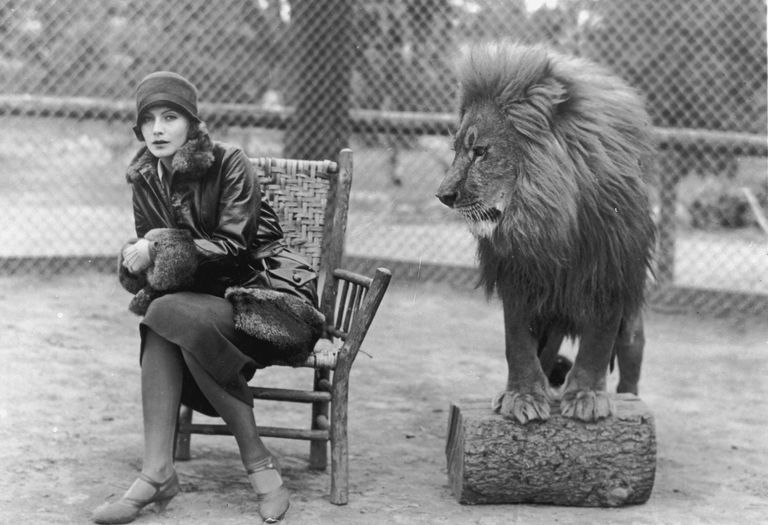 MGM Icons