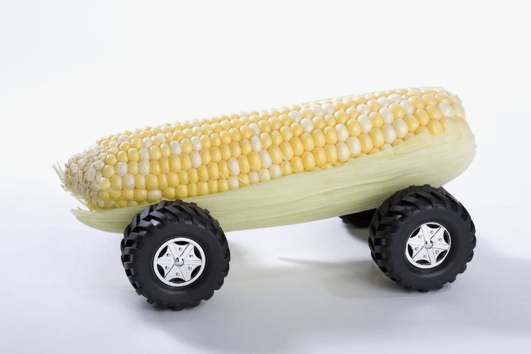 Close-up of a sweet corn car