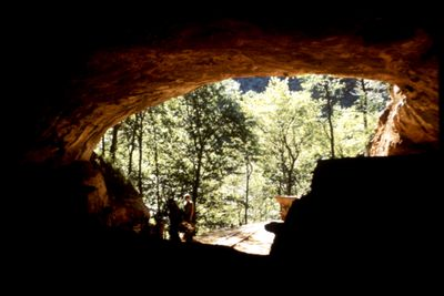 denisovan genome decoded The leipzig team has now developed sensitive novel techniques which have allowed them to sequence every position in the denisovan genome about 30 times over, using dna extracted from less.