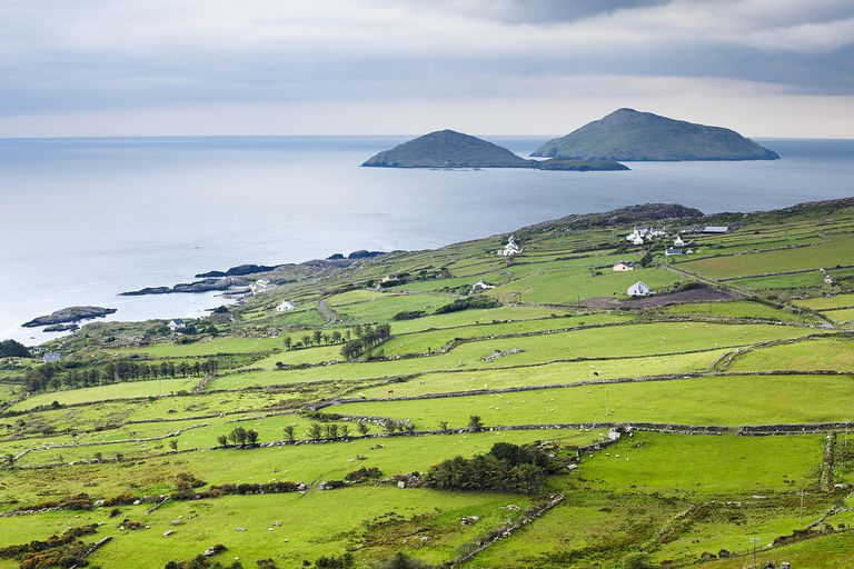 Can you trace your ancestors back to Ireland?