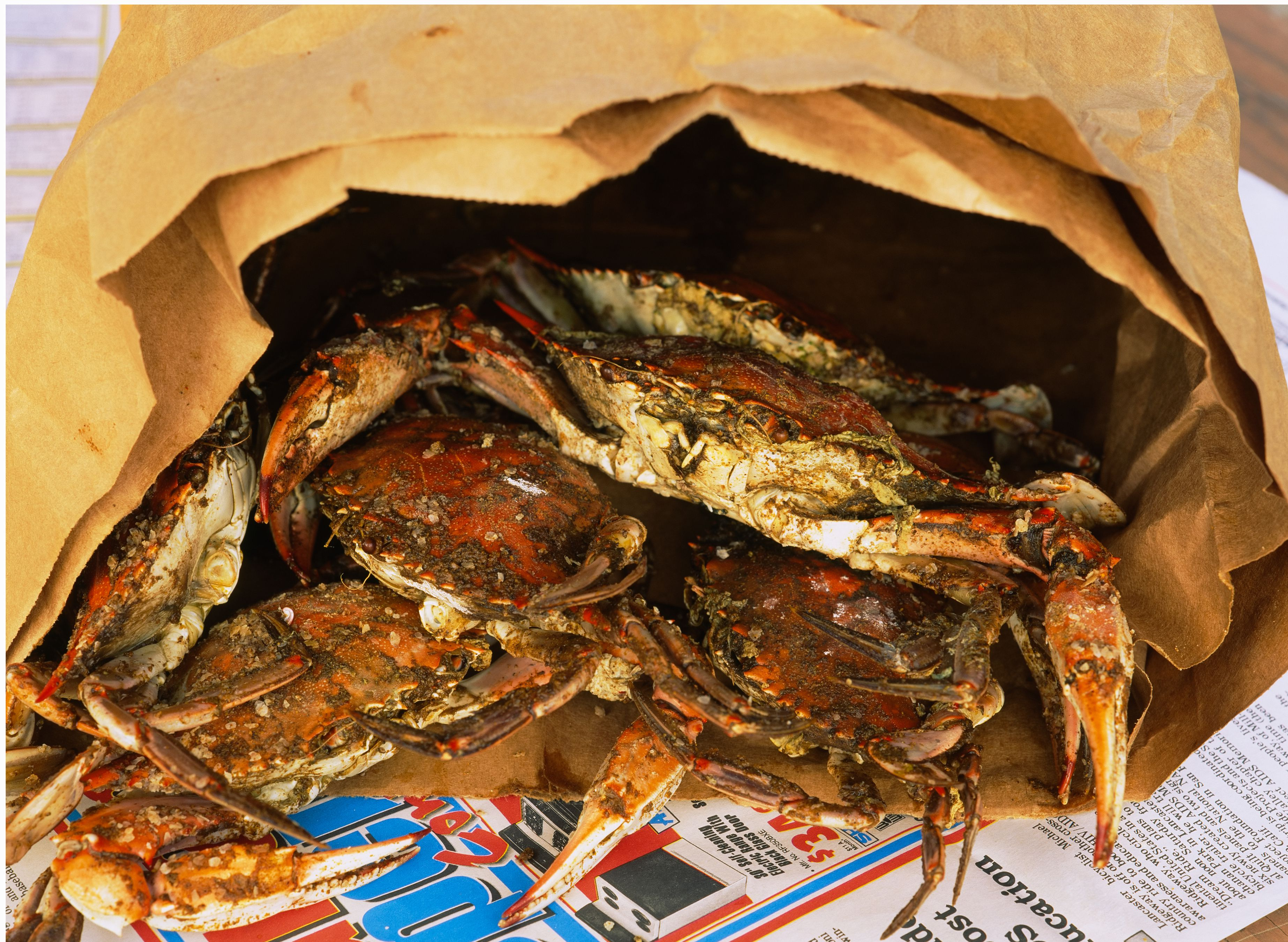 Best Places To Eat Steamed Crabs In Baltimore