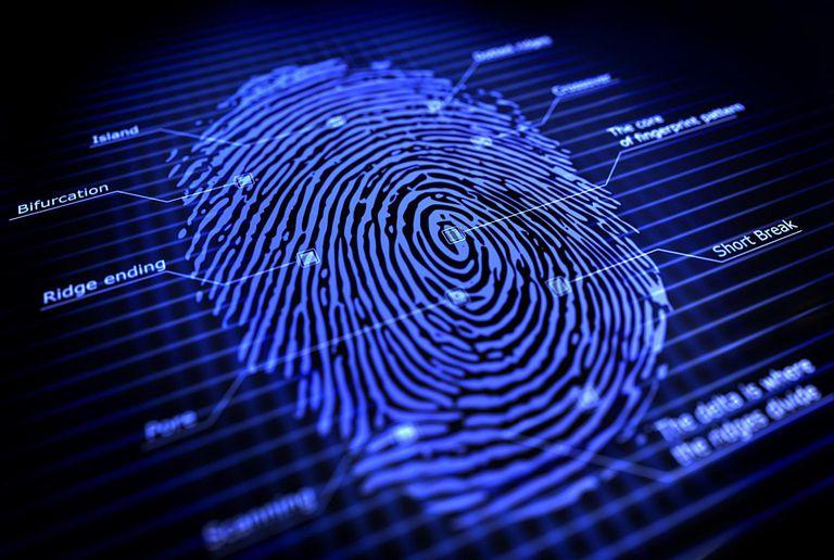 Dactylogram - Fingerprint
