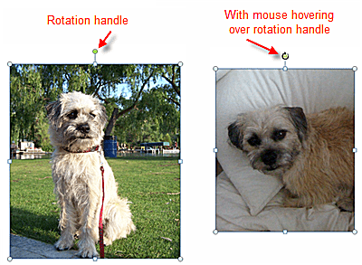 Free Rotate Picture in PowerPoint