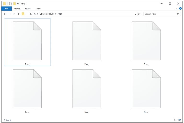 EX_ Files