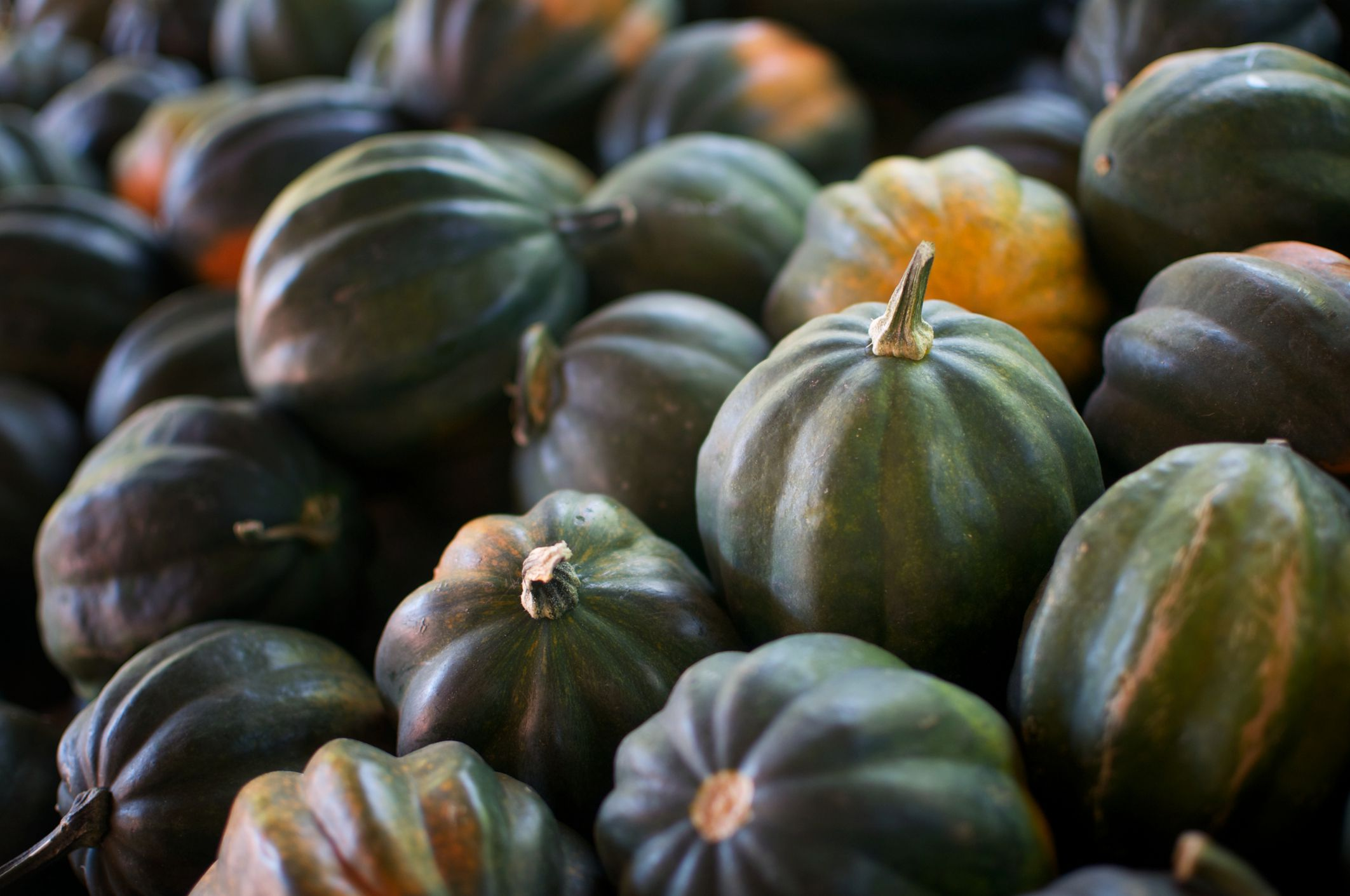 Useful Tips For Preparing And Cooking Acorn Squash