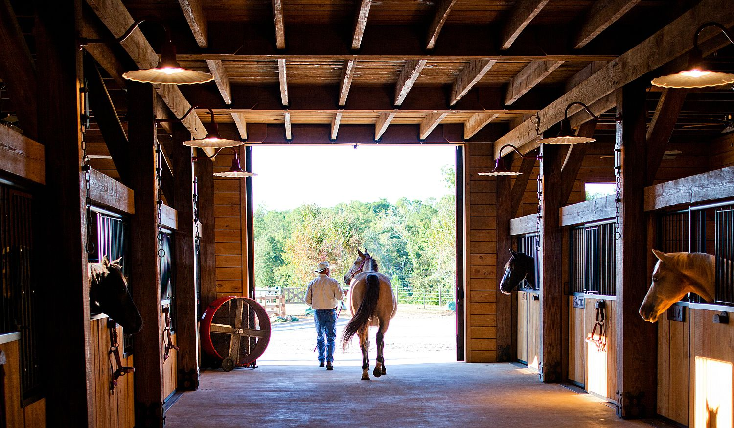 Design Your Horse\'s Stable and Stalls