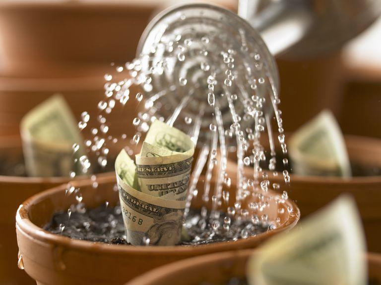 Watering can watering rolls of twenty dollar bills growing in flowerpots