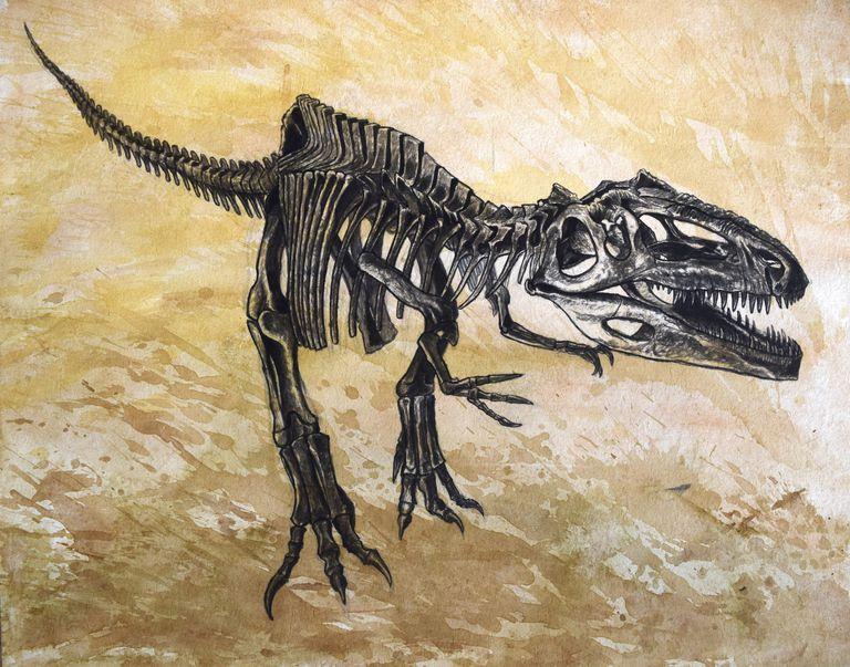 Giganotosaurus dinosaur skeleton on textured background.