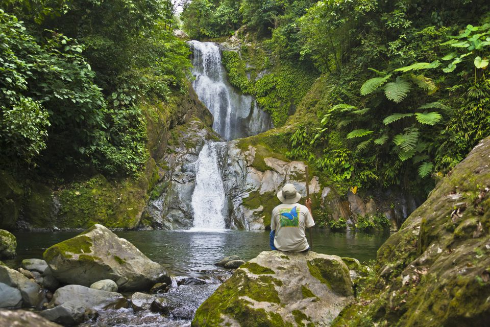 Tourist by waterfall in rain forest, Pico Bonito National Park, Honduras