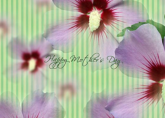 A Mothers Day Ecard With Purple Flowers On