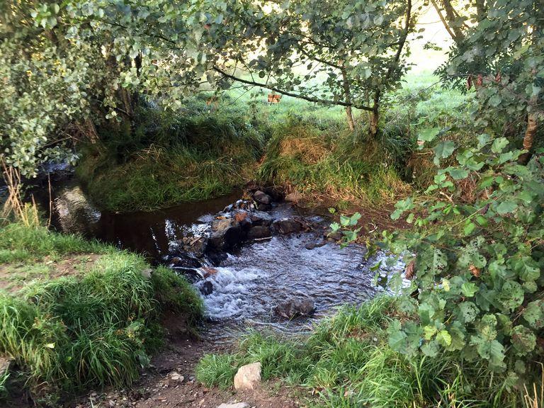 Camino - Stream at Lavacolla