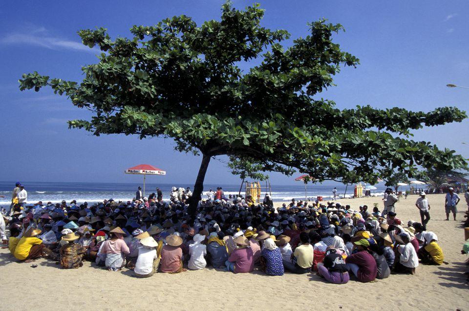 Bali High Season People Under Tree