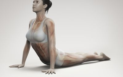 yoga poses and back pain  try the side angle