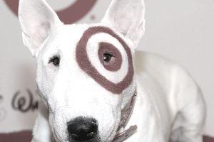Bullseye - Target's Mascot