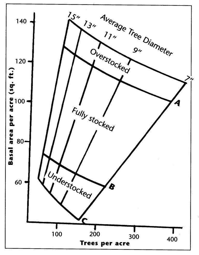 A Tree Stocking Graph