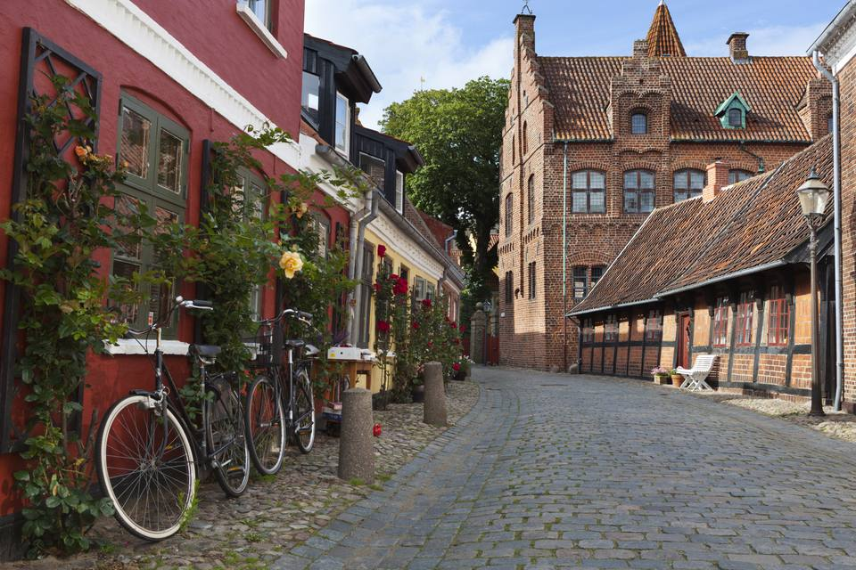 Cobblestone alley in the old town, Ribe, Jutland, Denmark, Scandinavia, Europe