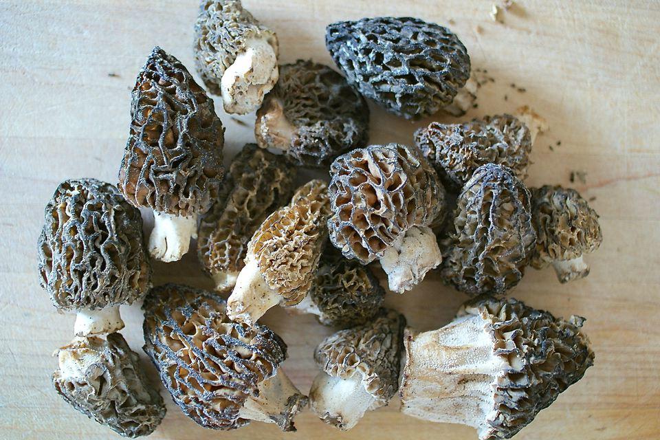 The Best Way To Clean Morel Mushrooms