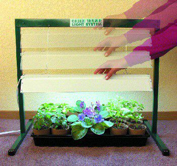Jump Start Grow Light System