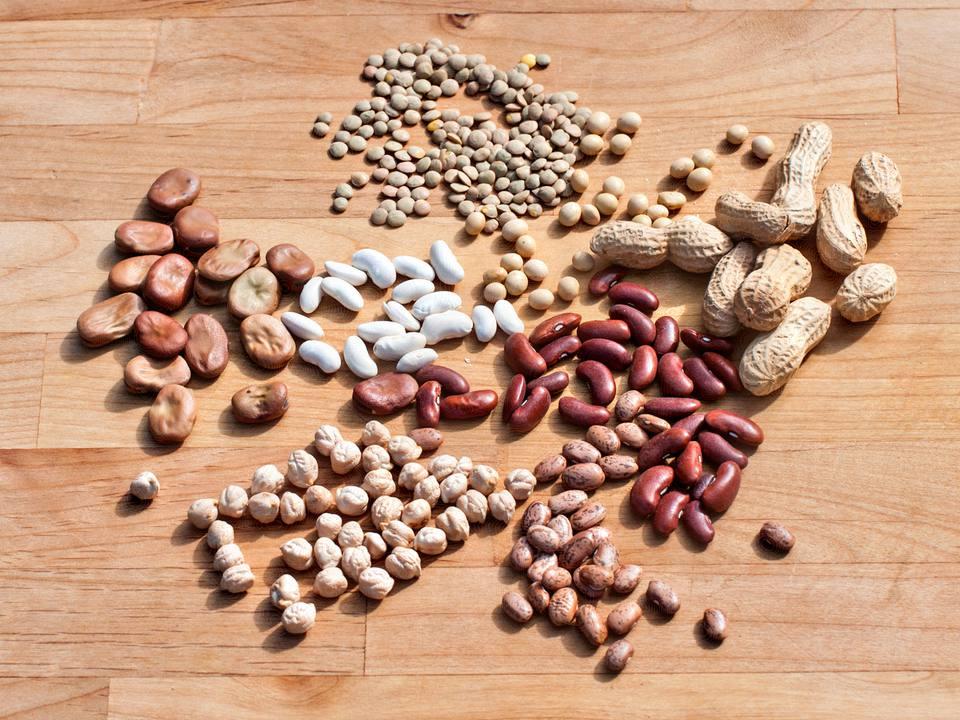 Legumes include beans, peas, even peanuts.