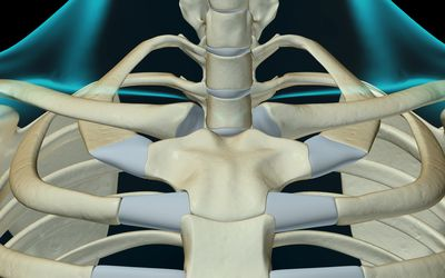 Subluxation And Joint Dislocation