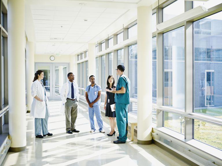 doctor nurse practitioner physician assistant
